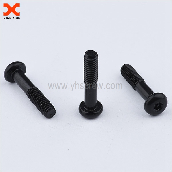 custom captive torx security screws manufacturer