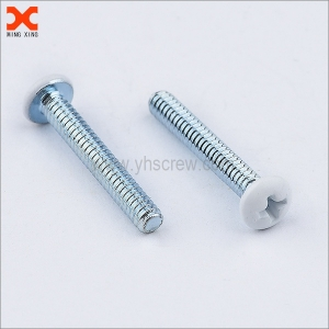 white painted pan head phillips machine screw