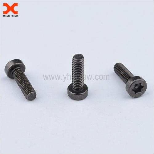 black nickel torx drive stainless steel security screws