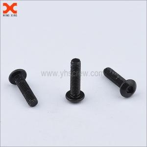 black truss torx head machine screws supplier