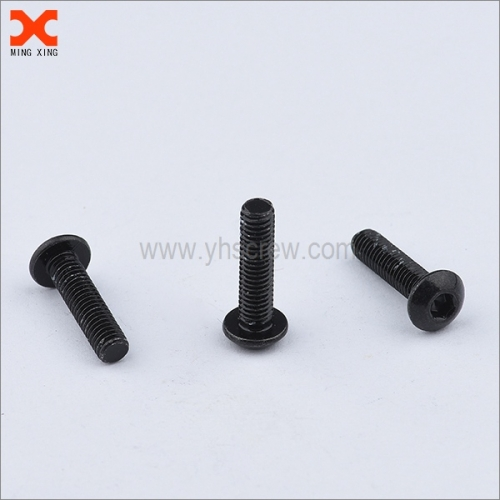 black truss torx head machine screws supplier