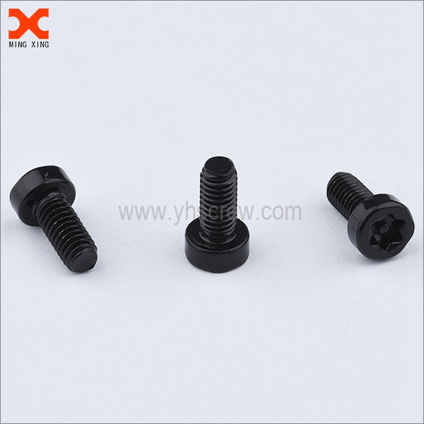 custom black zinc security torx screws wholesale