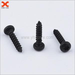 black oxide phillips drive torx pan head self tapping screws