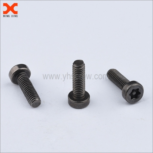 special pin torx security machine screws manufacturer