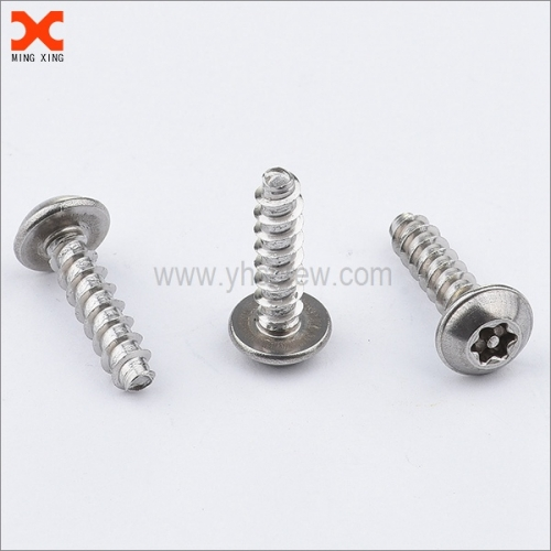 special pin torx stainless security screws supplier