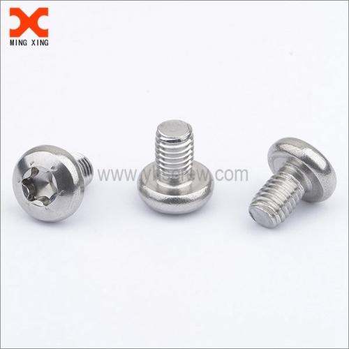 A4-80 stainless steel pan head metric torx machine screws
