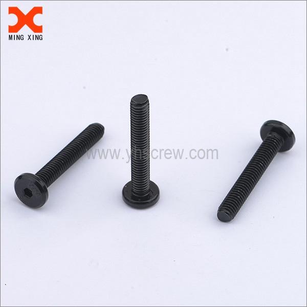 black zinc finish torx drive machine screws manufacturers