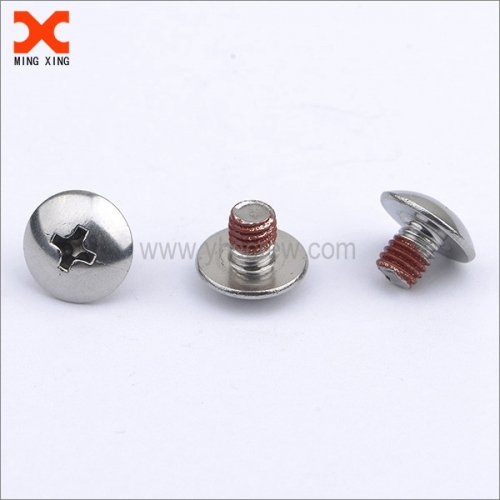 White Painted Stainless Steel Screws