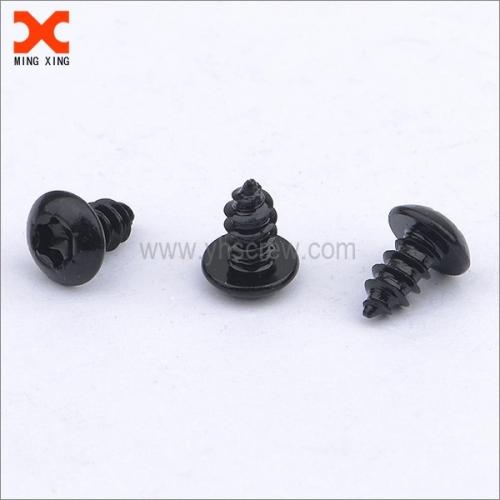 black truss head type ab self-tapping torx screws