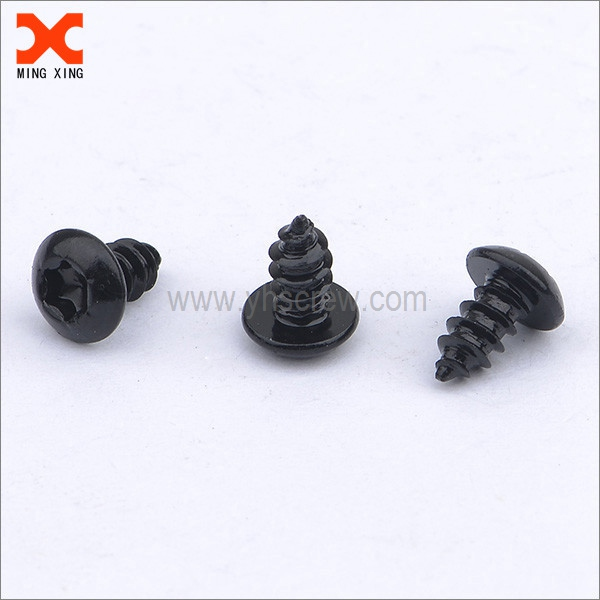 black truss head type ab self-tapping torx screws