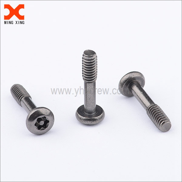 Types Of Security Screws Yuhuang Electronics Technology